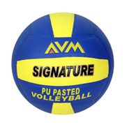 AVM Multicolor Signature Volleyball - Size 5, Dia 2.5 cm