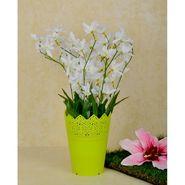 Importwala Orchid Arrangement White-1401-146E
