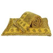 Set of 2 Jaipuri Print Cotton Double Bed Razai AC Quilt-DLI4DRZ3402
