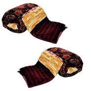 Jaipuri Print Cotton Double Bed Razai AC Quilt-DLI4DRZ407