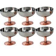 Dynore Stainless Steel Set Of 6 Ice Cream Cup With Copper Plated Bottom