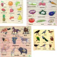 Dealbindaas Wooden Puzzle Birds Animals Fruits And Vegetables Combo