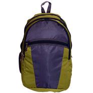 Donex Polyester Green & Grey Laptop Backpack -Rsc01259
