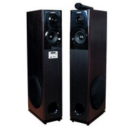 Zebion WRAPSODY WD1 Tower Speaker (Brown)