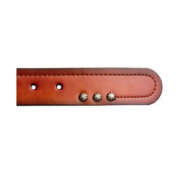 Swiss Design Leatherite Casual Belt For Men_Sd118tn - Tan