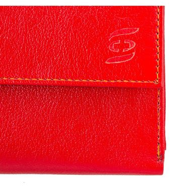 Swiss Design Stylish Wallet For Men_Sdtw15650rd - Red