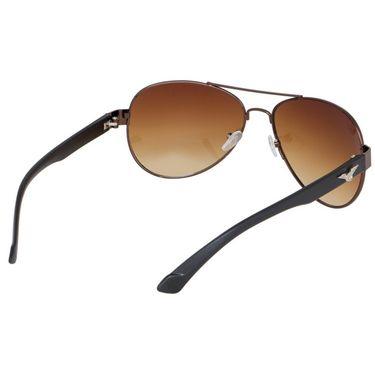 Alee Wayfare Plastic Unisex Sunglasses_Rs0242 - Brown