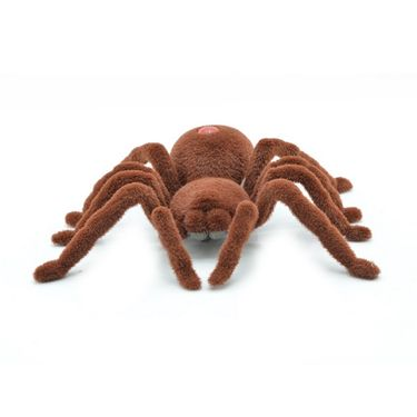 Big Remote Controlled Window Spider with Real Look