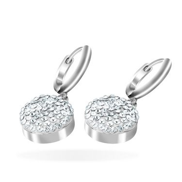 Mahi Rhodium Plated Artificial Earrings_Er1104053r