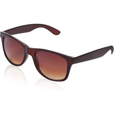 Royal Son Wayfarer Sunglasses - Brown