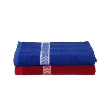 Banarsi Das Pack of 2 100% Cotton Bath Towels-bdt013