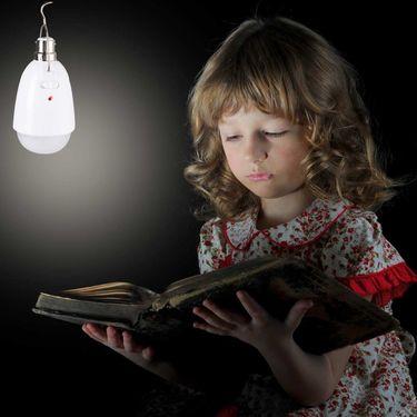 Set of 2 Portable 12W Hanging LED Bulbs