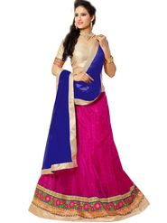 Florence Net with Braso Embroidered Lehenga - Pink