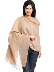 Aapno Rajasthan Pashmina  Light Brown Shawl -St1409