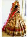 Thankar Thredwork Nylon Net Lehenga_Tkr57 - Beige & Red